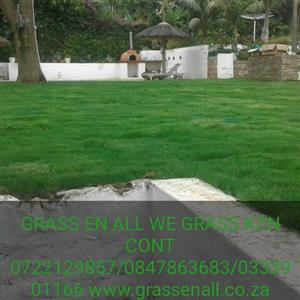 INSTANT TURF ROLL ON LAWN By GRASS En ALL WE GRASS K.Z.N NO HIDDEN OR EXTRA COST WE PREP THE GROUND CONT 0722129857 /0333901166