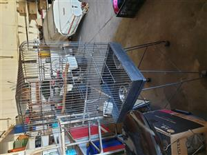 large bird cage ideal for african grey, etc