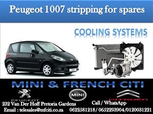 COOLING SYSTEM On Big Special for Peugeot  1007