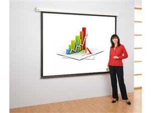 150 inch Electronic Motorized Projector Screen With Remote Control - 4:3 Aspect Ratio
