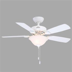 Ceiling fan bargain