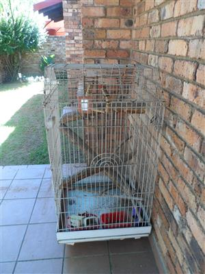 Extra Large Bird Cage with accessories for sale