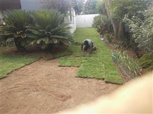Quality instant lawn all types Kikuyu LM Evergreen etc delivered and installed this Christmas special.
