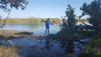 Okavango camping