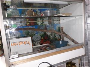 Large reptile tank for sale