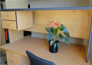 Single Desk ideal  a student or small study R550