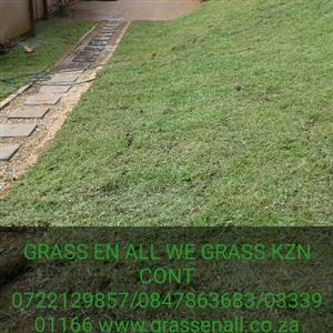 GO GREEN STAY GREEN INSTANT TURF ROLL ON LAWN by GRASS En ALL WE GRASS K.Z.N. 0722129857