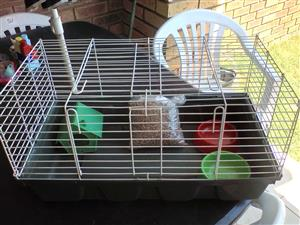 Large cage for Dwarf Rabbit/Guinea pig