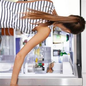 sameday fridge repair