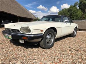 1981 Jaguar XJS V12