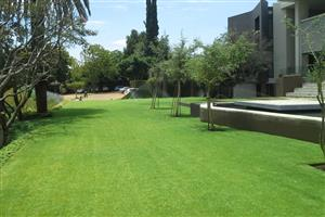 Mambo garderns offers landscaping and irrigation services call us on 0849549692