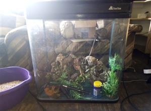 Sun sun fish tank for sale complee