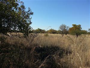 10000m² plot farm North of Pretoria