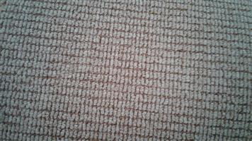 CARPET (NEW) FOR SALE