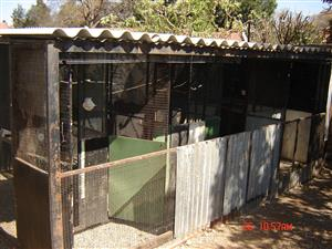 PARROT/PIGEON LOVERS AND BREEDERS: BIRD CAGES FOR SALE