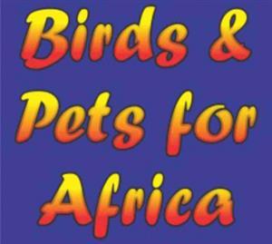 birds pets accessories