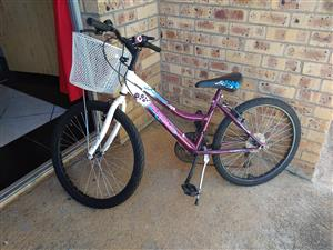 Bicycle for Girls with Bicycle Basket
