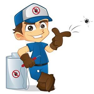 Cheap Pest control