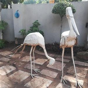 Very large Garden Birds