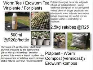 Earthworm Products / Erdwurm Produkte & Potplant - Worm Compost (vermicast) / Erdwurm kompos