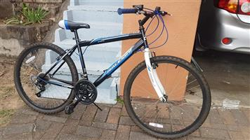 Raleigh Mountain Bike For Sale   Junk Mail