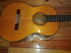 Acoustic Gitaar - Ibanez