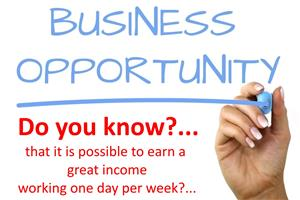 AMAZING Online Business Opportunity - ZERO Risk!!