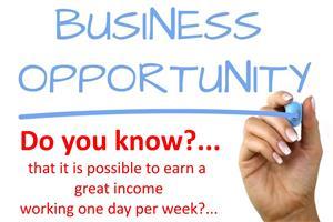 AMAZING Online Business Opportunity - ZERO Risk!!
