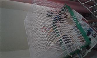 cage or can be used to house budgies or lovebirds or used coakteils