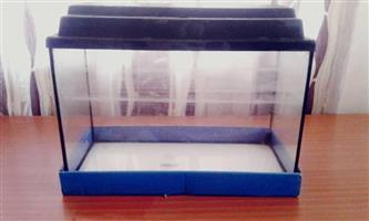 Blue fishtank for sale