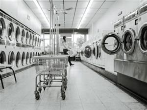 Laundry Franchise for sale