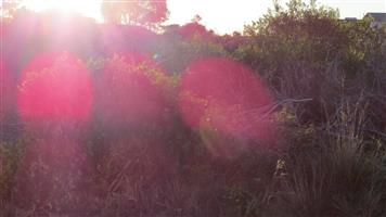 Vacant Land for Sale in Jeffreys Bay