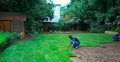 BUILDING CONSTRUCTION & INSTANT LAWN