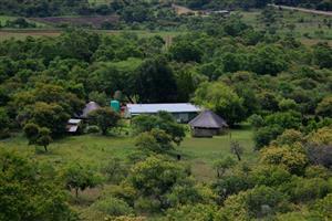 Cattle farm in Roossenekal