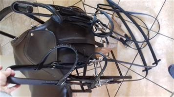 Horse riding equipment for sale