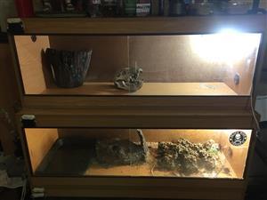 2 x Reptile Tank 1.2m R500.00 each