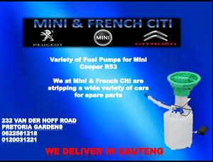 Variety of Fuel Pump for Mini Cooper R53