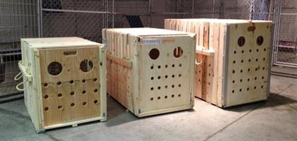 Dog or Animal Wooden Crates for Transport and Cage Training