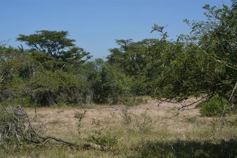 Vacant Land Residential For Sale in MODITLO NATURE RESERVE