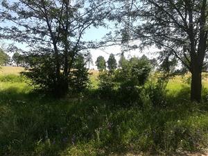 Vacant Land For Sale - 42 Beacon Avenue, Deneysville