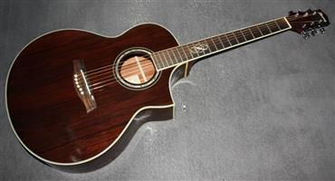 Ibanez EW20 Exotic Wood Acoustic Guitar - Cordia Wood Top/Back and Sides