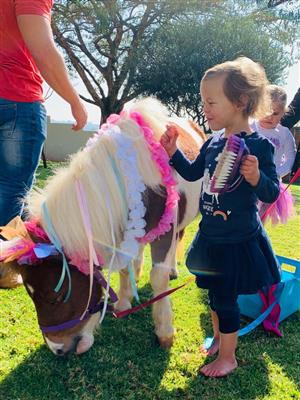 PONY PARTIES FOR HIRE