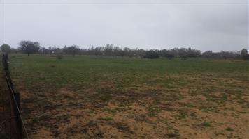 Vacant Land For Sale in Nieuwoudtsville Northen Cape