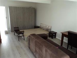 Rosettenville studio apartment to rent
