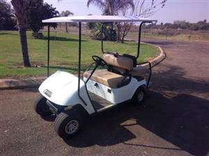 4x Seater Ezgo golf Cart Petrol