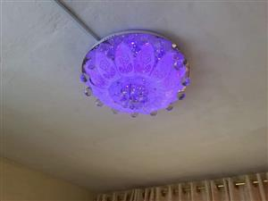 Purple ceiling light for sale
