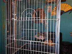 Large cage with stand