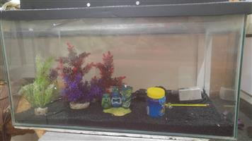 Fish tank with assesories.