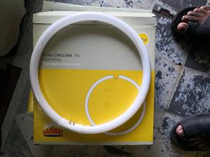 Fluorescent circline lamp or bulbs