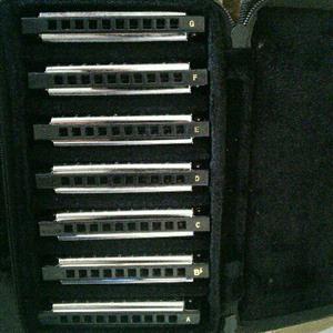 Fender Blues Harmonica set